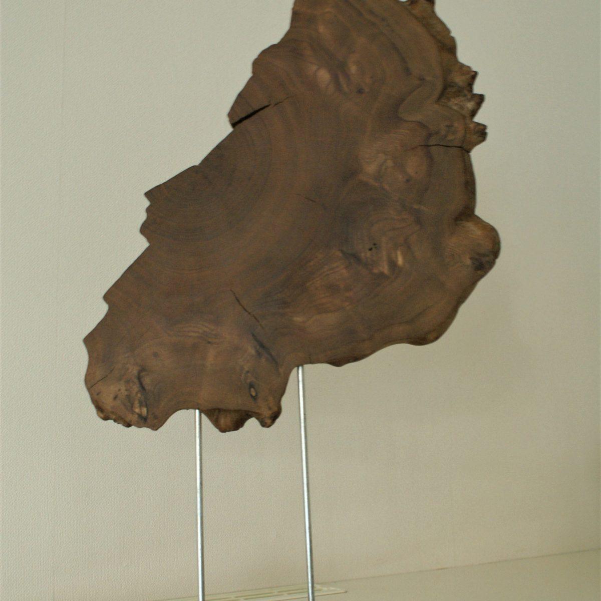 Kunstwerk van iepenhout
